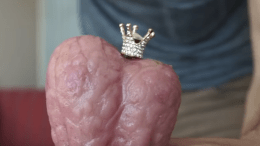 NSFW: Testicle Spectacle