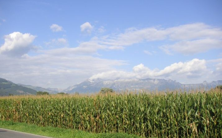 The Green Revolution is not so Green: How modern agriculture affects the climate