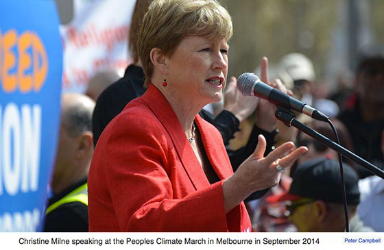 Christine Milne: 'Depoliticise the climate emergency'