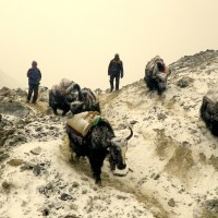 Images from Everest