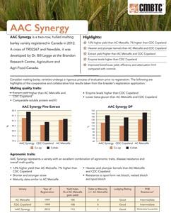 AAC Synergy