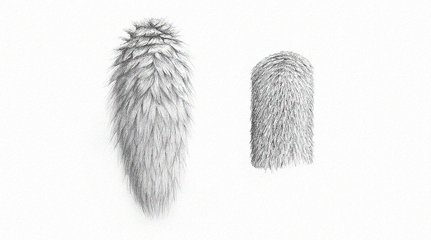 How to Draw Fur how to draw realistic fur with pencils