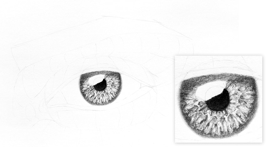 How to Draw a Realistic Eye shadow on the eye