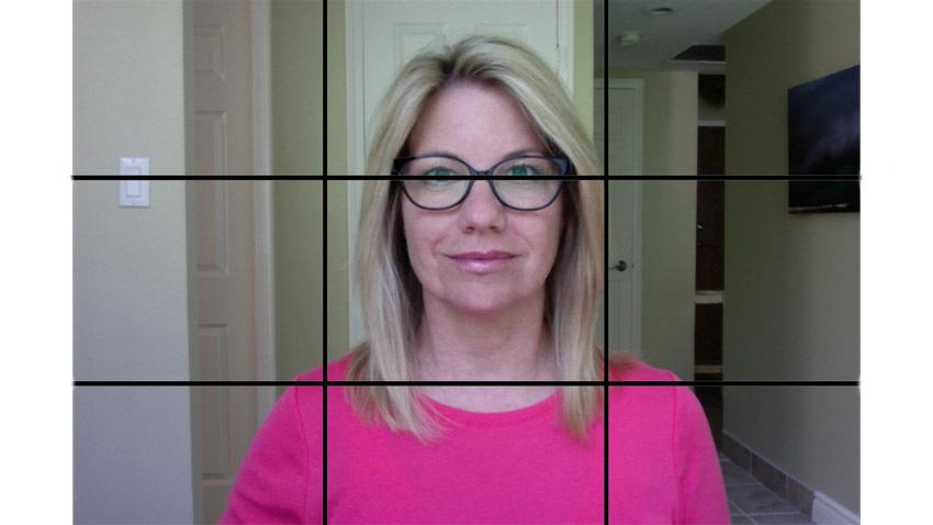 Webcam shot with grid overlay