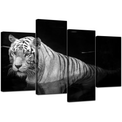 Small Crop Of Black And White Canvas Art