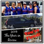 2014: The Good, the Bad, the Ugly. The Year in Review