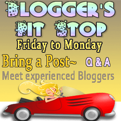 Blogger's Pit Stop #5