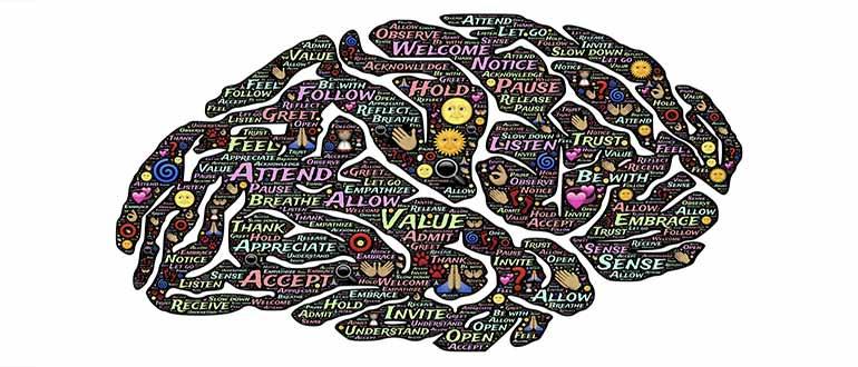 Intelligenza Emotiva: 18 caratteristiche comuni