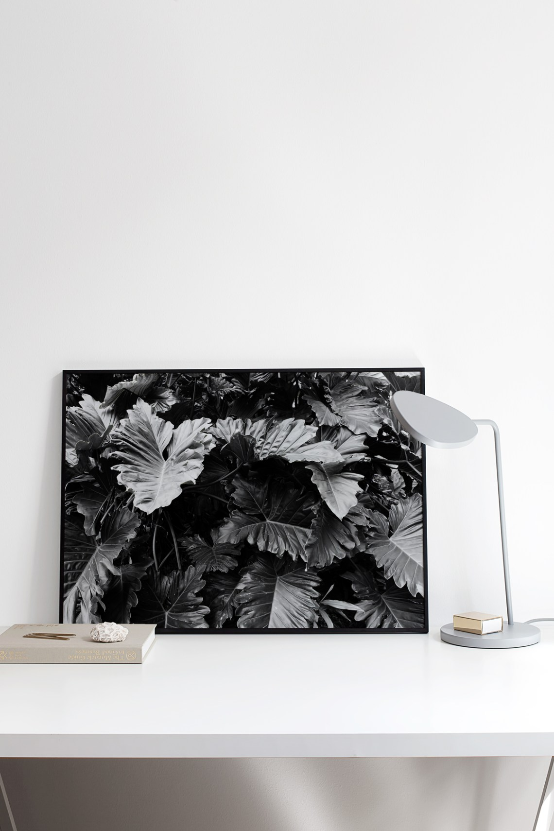 New prints in the shop: Botanical series - cocolapine.bigcartel.com