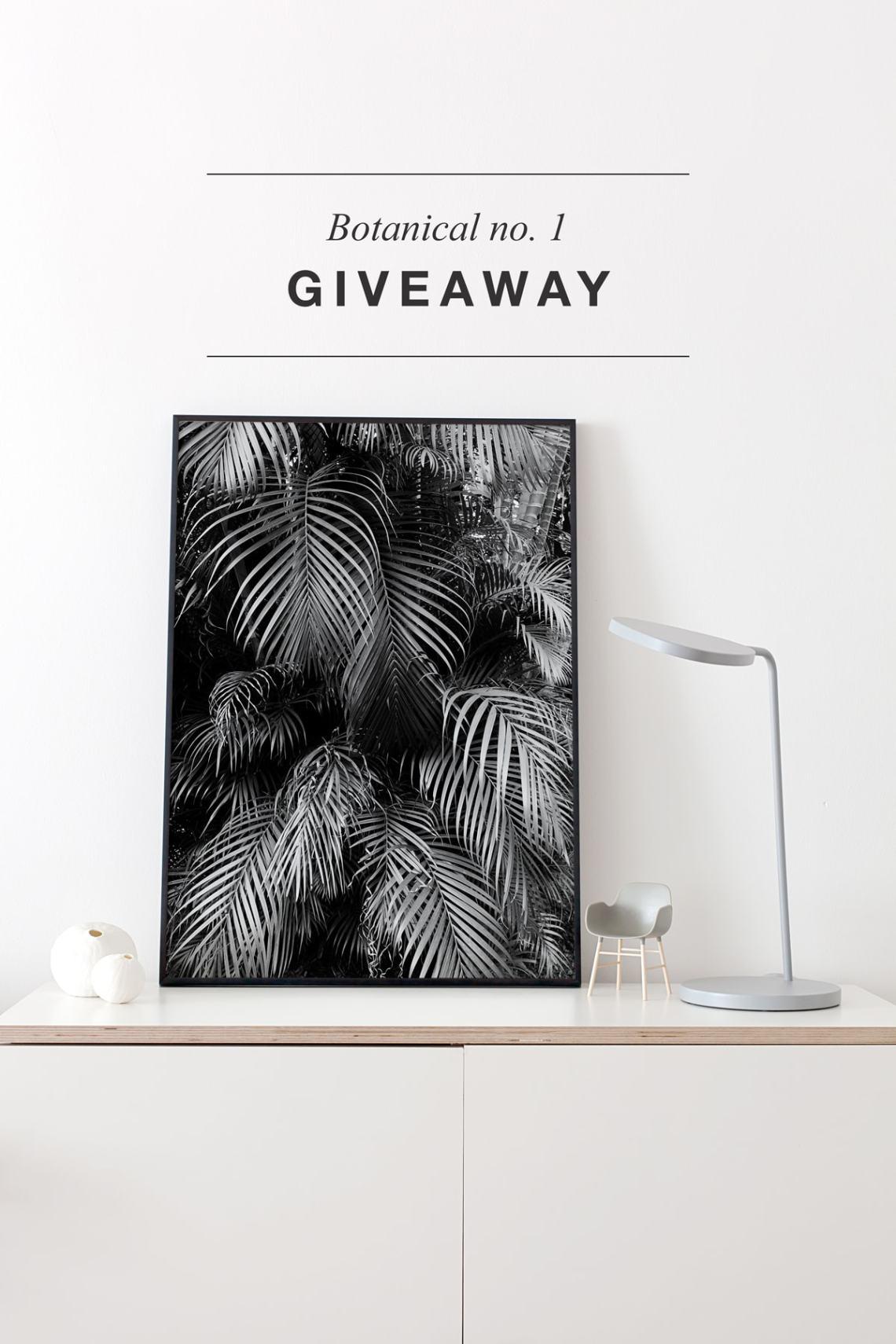 Giveaway: 'Botanical no. 1' print - via cocolapinedesign.com