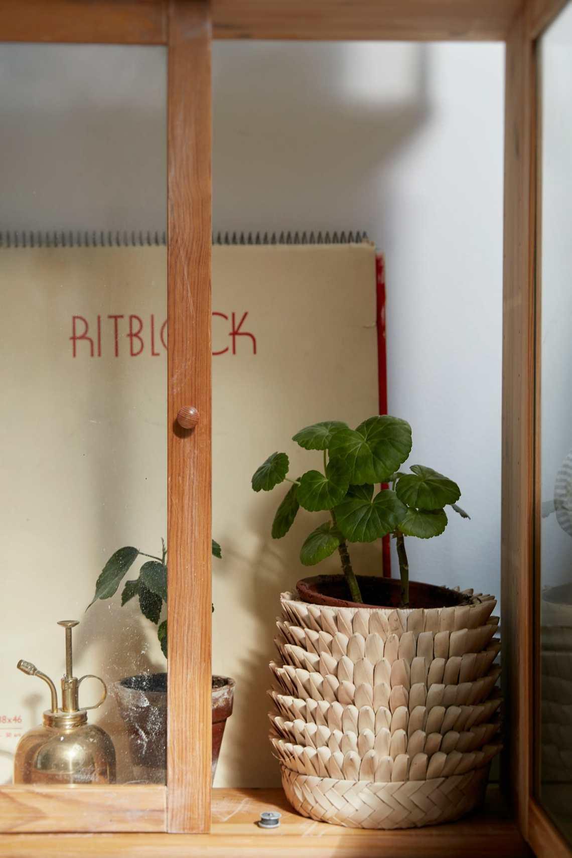 Botanical attic - via cocolapinedesign.com