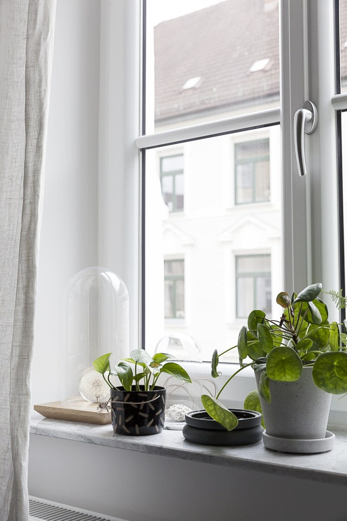 Green in our window - Coco Lapine Design