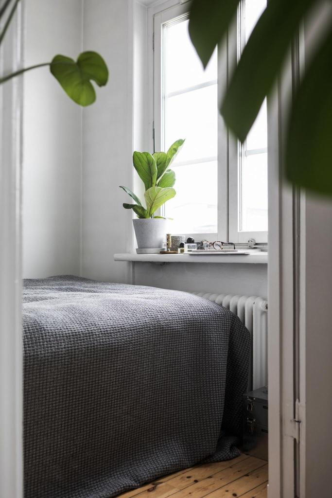 Green living space - via Coco Lapine Design blog