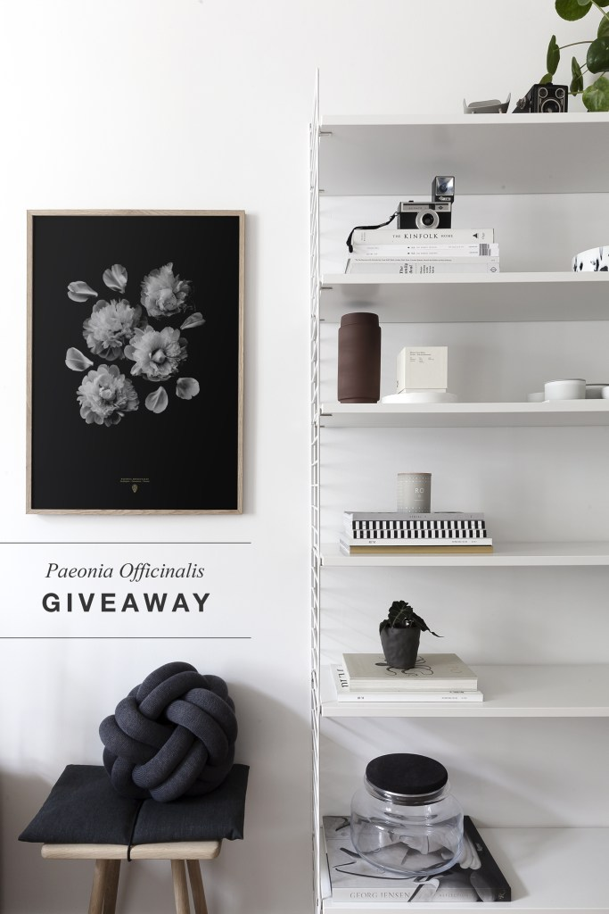 Paeonia Officinalis giveaway - Coco Lapine Design blog