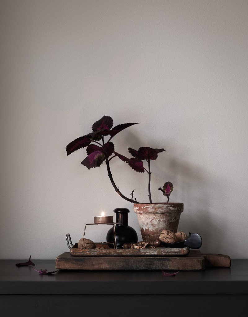 Rustic mood by Daniella Witte - via Coco Lapine Design blog