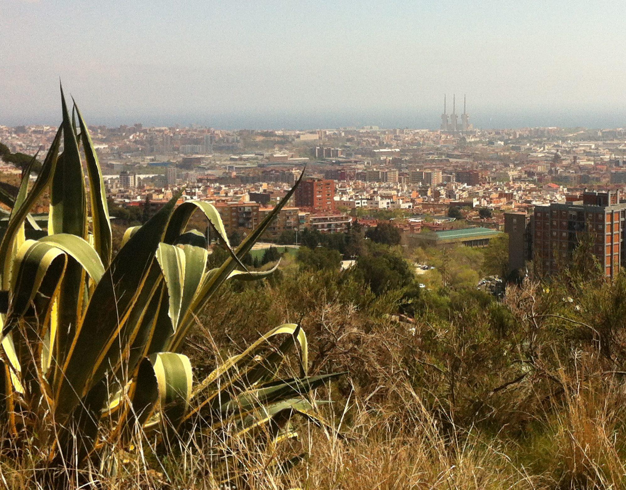 View over Barcelona city from the Carretera de las Aguas