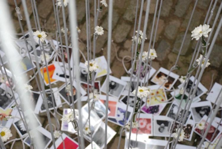 Girona Temps de Flors | ©Dan Convey