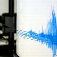Se registra fuerte temblor