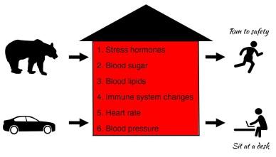 stress cancer