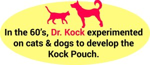 Kock_Pouch