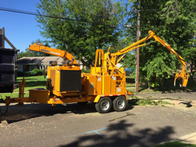Tree grinding machine used during tree & stump removal