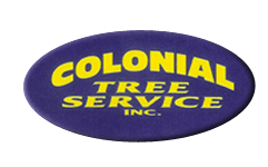Colonial Tree Service