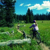 Family Mountain Biking Adventure Puts Sharpie Extreme to Test