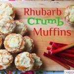 A Tornado Begets Community, a Garden, and Eventually a CSA Recipe: Rhubarb Crumb Muffins