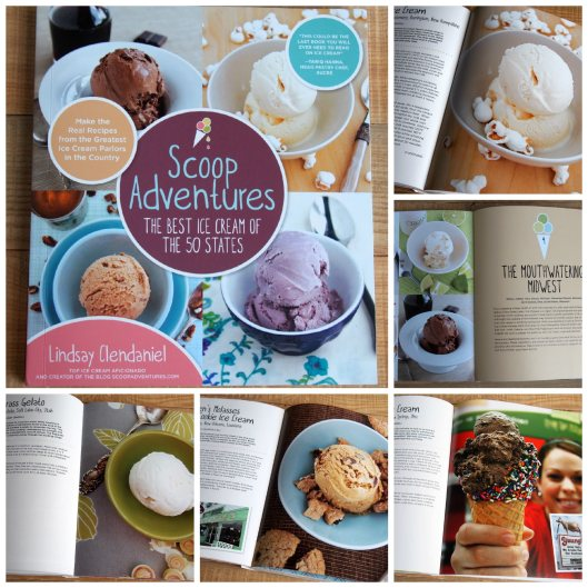 Scoop Adventures Book Giveaway | ComfortablyDomestic.com