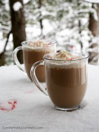 Peppermint Mocha Latte (includes a Skinny version!)