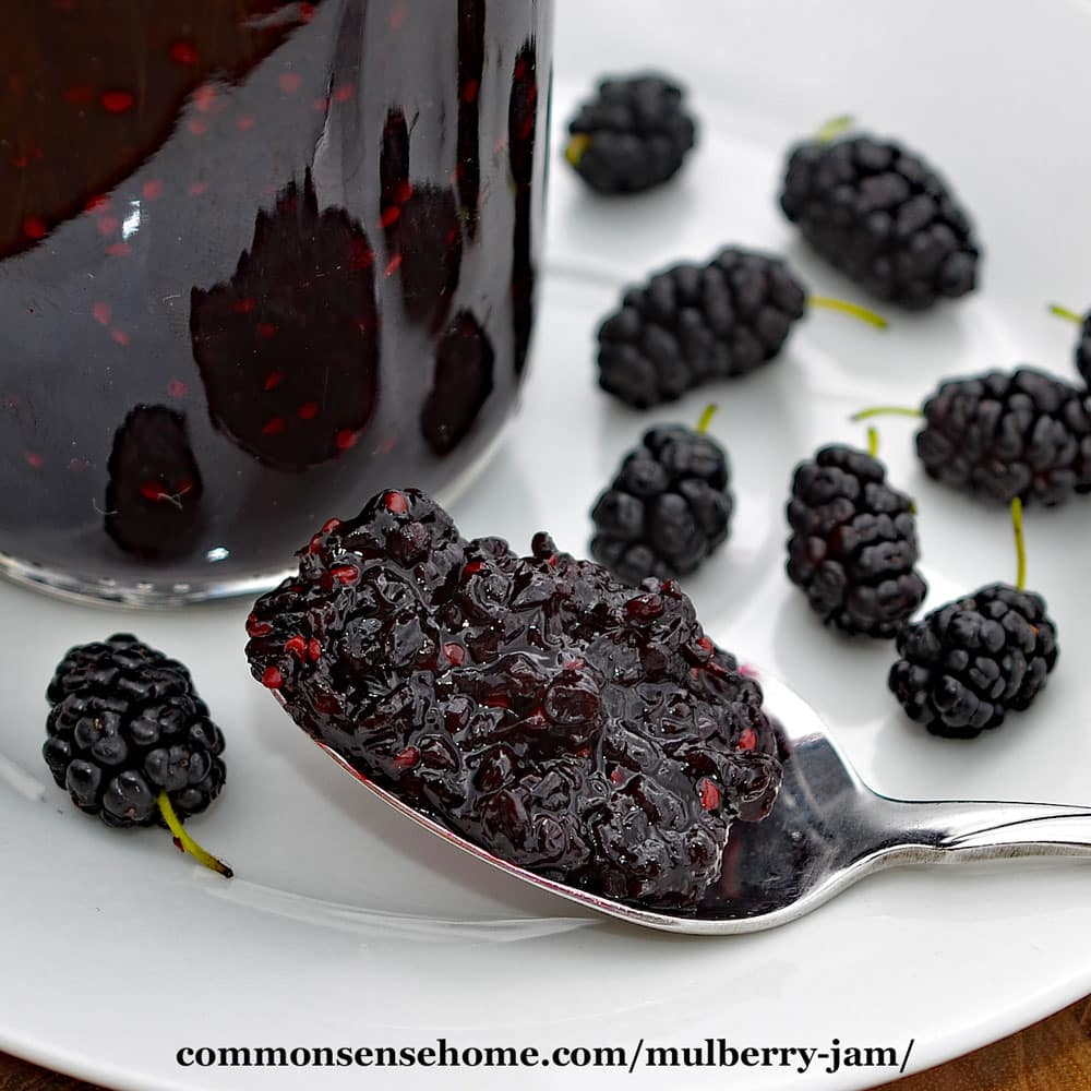 Smothery Mulberry Jam Mulberry Jam Recipe Step By Step Spoon Filled Photos Use Fresh Or Frozen Mulberry Blackberry Ice Cream Blackberry Jam Mulberry houzz-03 Mulberry Vs Blackberry