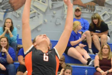 Aledo sophomore setter Sarah Morehead sets up a hitter Tuesday night during the Ladycats' sweep of Brewer in a District 6-5A volleyball match at Brewer.