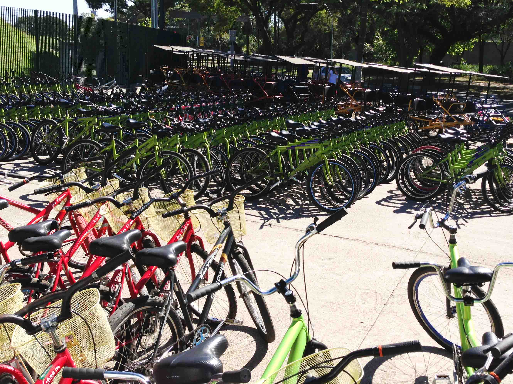 Parque-Villa-Lobos-Passeio-de-Bicicleta-Bike-São-Paulo-Nathalia-Molina-@ComoViaja-1