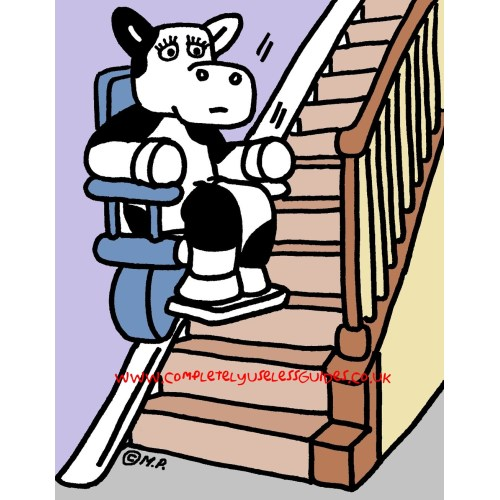 Medium Crop Of Can Cows Go Down Stairs