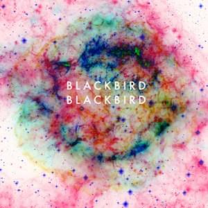 blackbird_blackbird_refresh