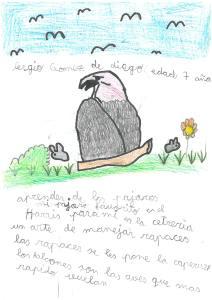 Sergio Gomez de Diego - Mirada de águila