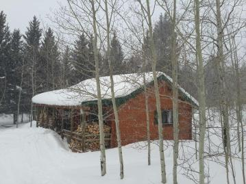 Trout Run log cabin in snow storm with piled firewood
