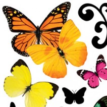 Butterly Fly Stickers