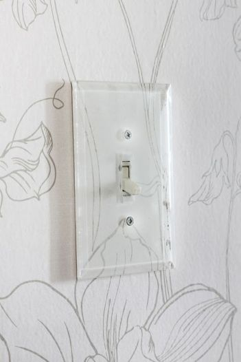 Clear Switch Plate Cover--Hunted Interiors