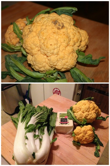 cauliflower-fun