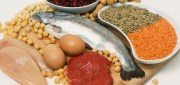 the-best-high-protein-foods--493x264