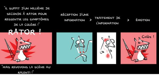 Emotions_BD_non_coupable_mini