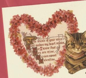 cat valentine card