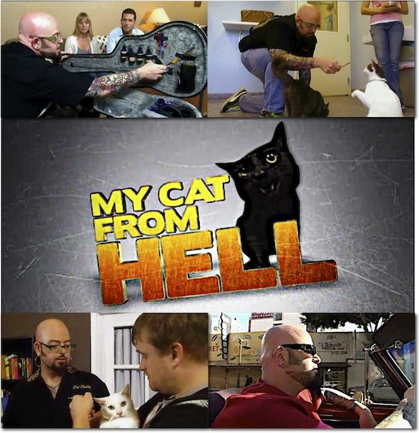 Jackson galaxy takes on problem cats in new york and la in for Jackson galaxy shop