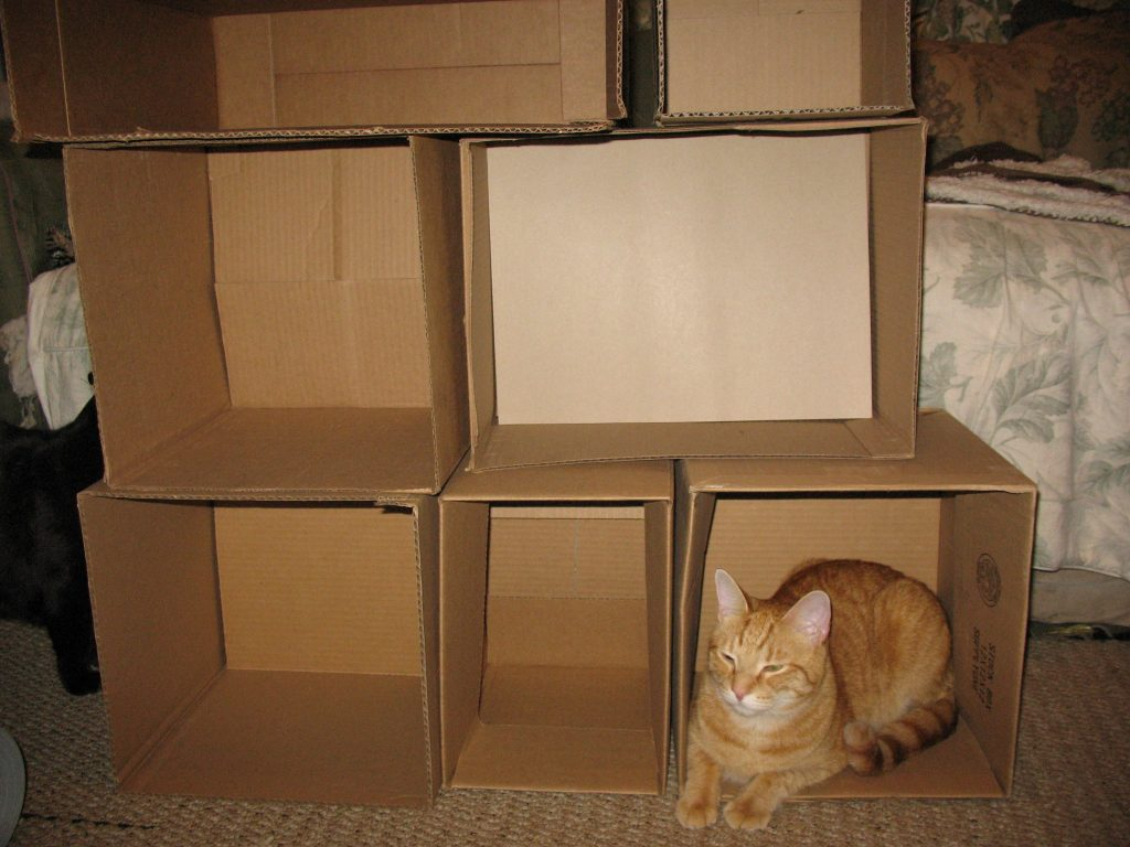 Diy custom cat climbing wall for Homemade cat tower