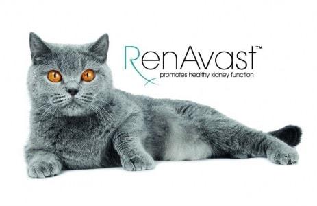 RenAvast_kidney_function