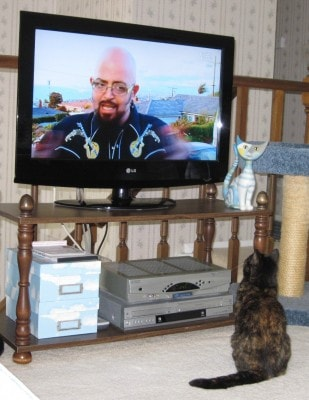 Jackson_Galaxy_My_Cat_From_Hell