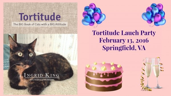 tortitude-launch-party