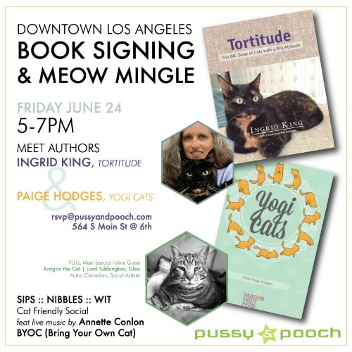 social-cat-book-signing