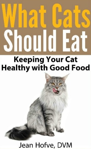 what-cats-should-eat